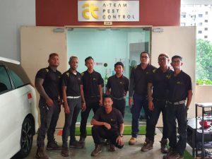 ateam team employees Careers ateamteam 300x225